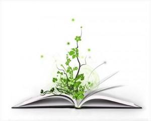 книга светкой